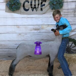 Elite Sheep – Dona Livestock Grand Champion Market Lamb