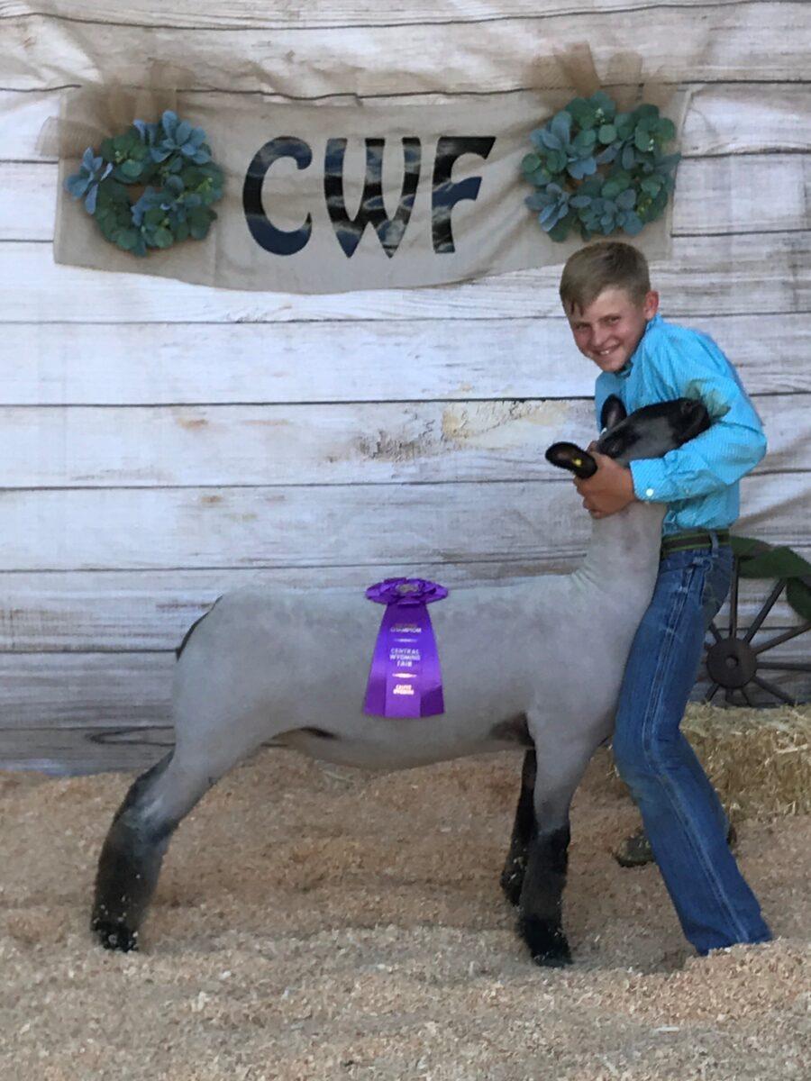 Elite Sheep – Dona Livestock Grand Champion Market Lamb